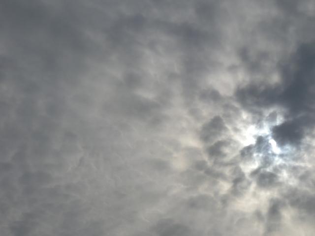 金環日食-4.jpg